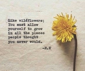 grow, quote, and wildflower image