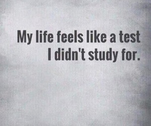 life, test, and study image