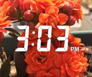 amazing, flowers, and life image