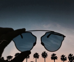 sunglasses, palms, and summer image