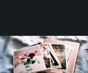 flowers, photography, and polaroid image
