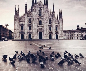 italy, milan, and city image