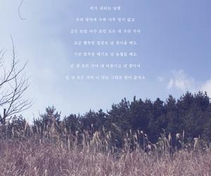 everything, favourite, and korea image