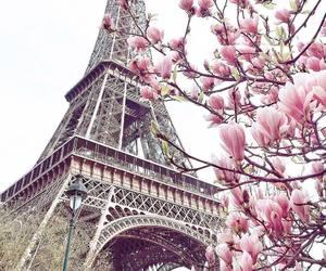 travel, paris, and spring image