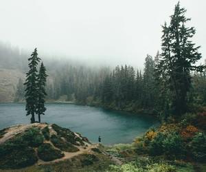 nature, grunge, and landscape image