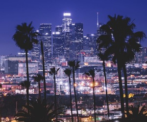 beautiful, palms, and california image