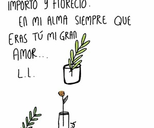 drawing, frases, and love image