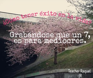 frases, life, and school image