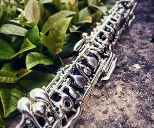 lové, photo, and oboe image
