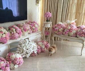 dog, flowers, and luxury image