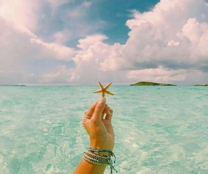 summer and starfish image