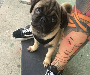 dog, tattoo, and pug image