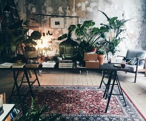 interior and plants image