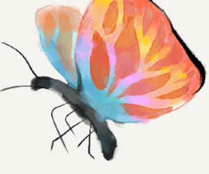 Animales, colores, and mariposas image