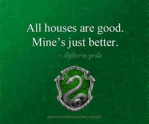 slytherin, hogwarts, and harry potter image
