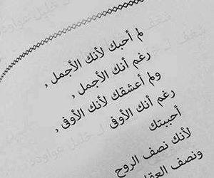 Image by Sara El-dabour