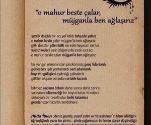 siir, türkçe, and deniz gezmiş image