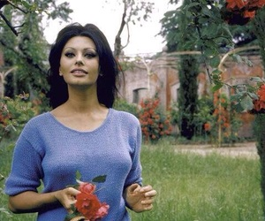 sophia loren, beauty, and 60s image
