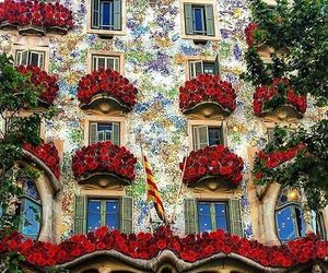Barcelona, dream place, and flower image