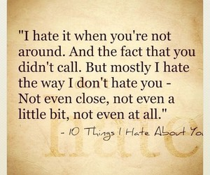 quote, 10 things i hate about you, and hate image