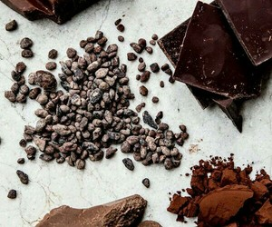 chocolate and cocoa image