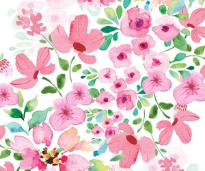 backround, flowers, and rosa image