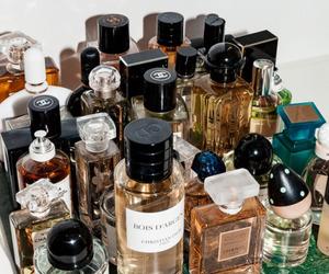 perfume, beauty, and makeup image