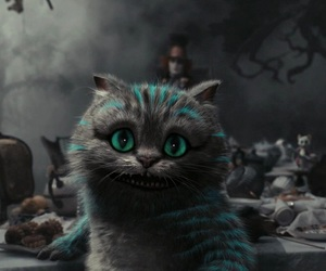 cat, alice in wonderland, and Cheshire cat image