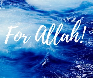 allah, blue, and islam image