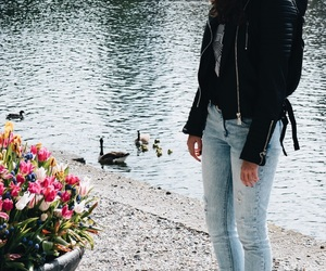 ducks, fashion, and girl image