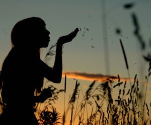 girl, field, and photography image