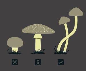 mushroom, drugs, and trip image