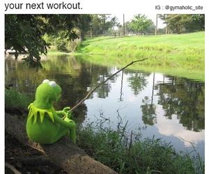 fitness, meme, and motivation image