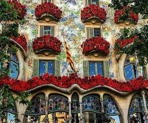Barcelona, flowers, and visit image