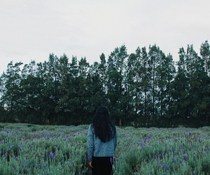 forest, fashion, and lavender image