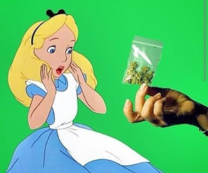 alice, alice in wonderland, and drugs image