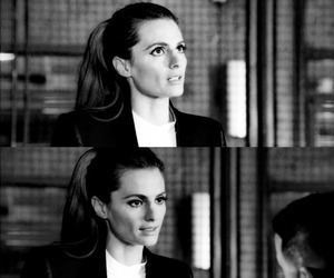 castle, gorgeous, and stana katic image