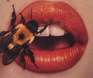 lips, bee, and red image