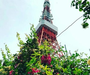 japan, spring, and tokyotower image