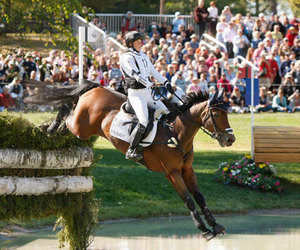 germany, horse, and jump image