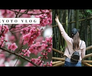 japan, bamboo forest, and chelsea pearl image