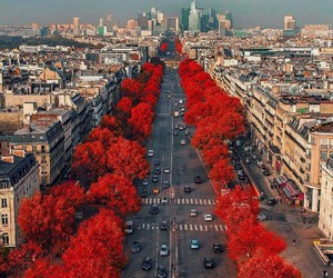 city, paris, and red image
