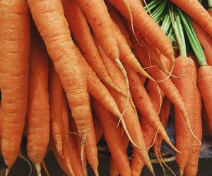 carrot juice, natural skin care, and natures gift image