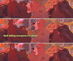 disney, brother bear, and funny image