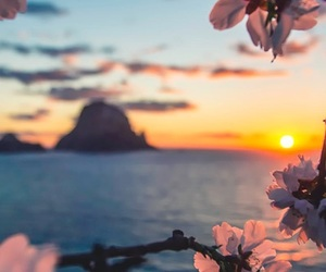 blue, ocean, and flower image