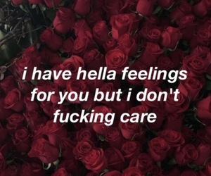 feelings, quotes, and rose image