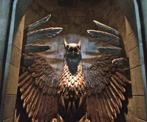 florida, harry potter, and hogwarts image