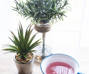 cup, photography, and plants image