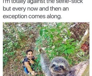 funny, tumblr, and selfie image