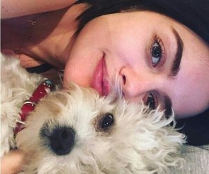 dog, aria, and lucy hale image